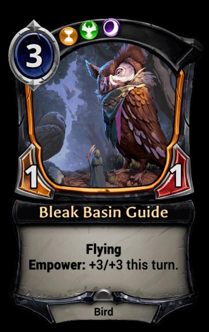 Card image for Bleak Basin Guide