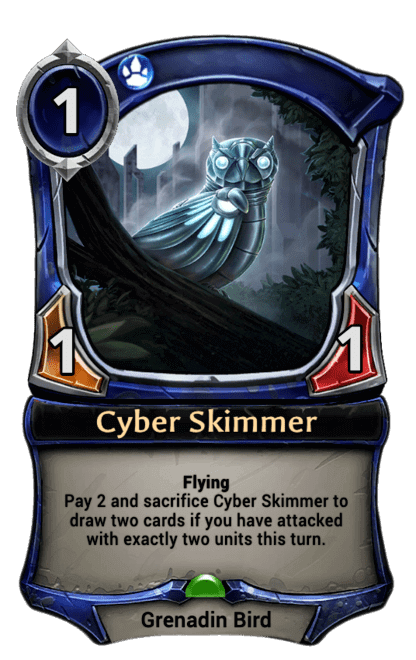 Card image for Cyber Skimmer