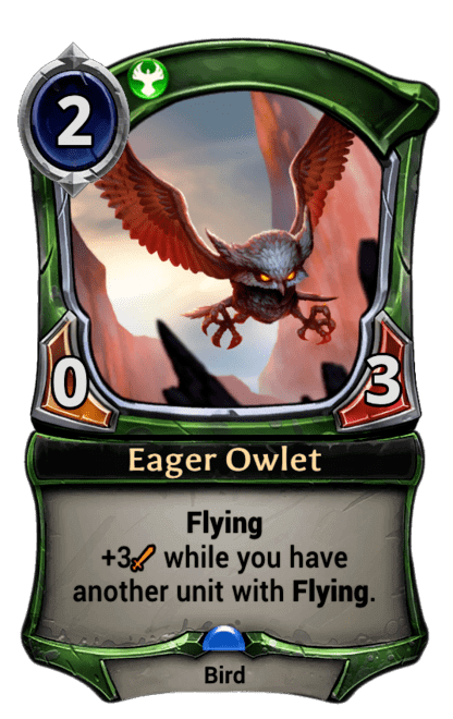 Card image for Eager Owlet