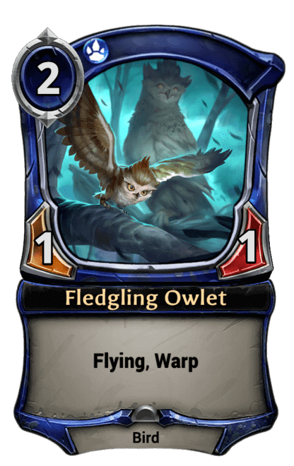 Card image for Fledgling Owlet