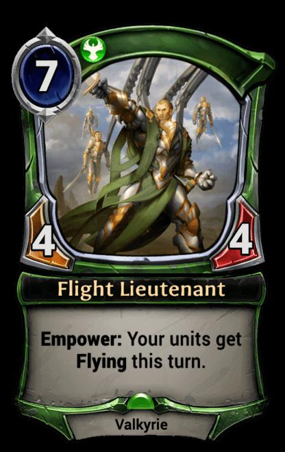 Card image for Flight Lieutenant