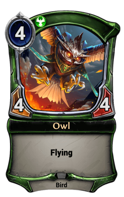 Card image for Owl