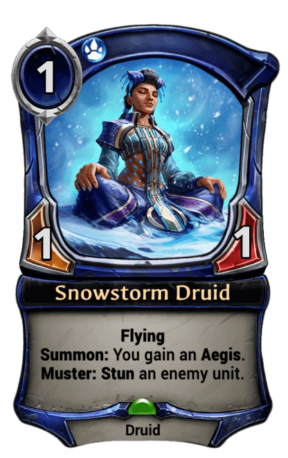 Card image for Snowstorm Druid