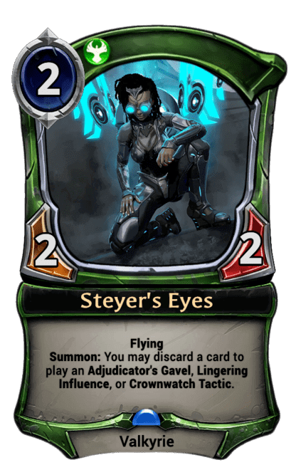 Card image for Steyer's Eyes