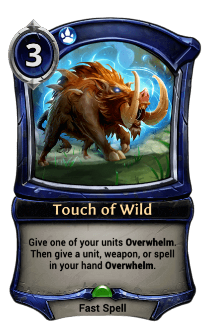 Card image for Touch of Wild