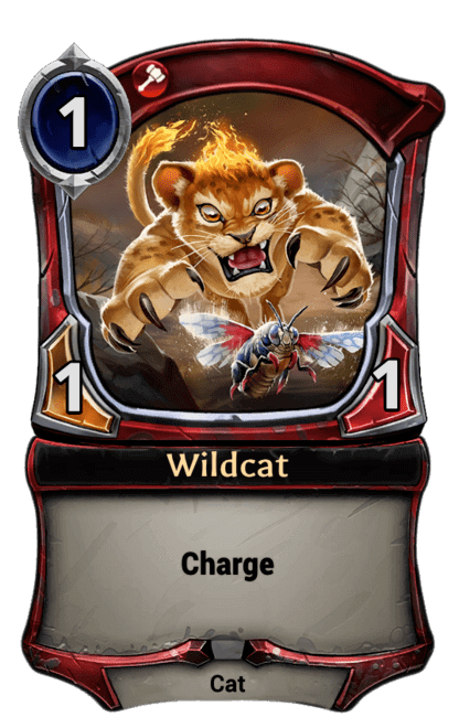 Card image for Wildcat
